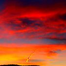 What's in a Contrail? by Christine Ford