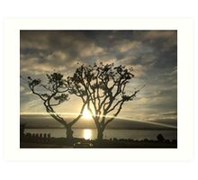 Corel Trees Art Print