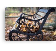 Where The Leaves Rest Canvas Print