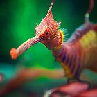 Sea Dragon by KirstyStewart