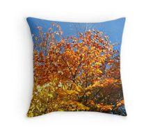 Blue Sky and Autumn Glory Throw Pillow