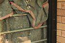 glorious mud by chookshedflambe