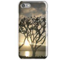 Corel Trees iPhone Case/Skin