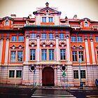 Prague Medical Center  by ChelcieSPorter