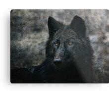 the black wolf Metal Print