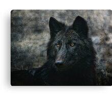 the black wolf Canvas Print