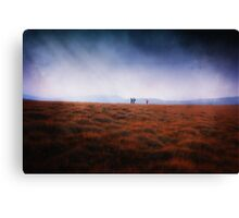 Explorers Canvas Print