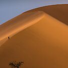 Dune 45 by Neville Jones