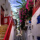 Flowers in a Mykonos Lane by Tom Gomez