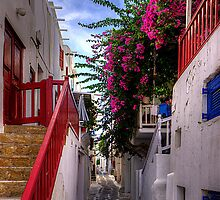 Flowers in a Mykonos Lane by Tom Gomez