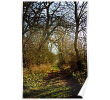 Countryside Path Poster