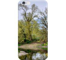 Springtime Creek iPhone Case/Skin
