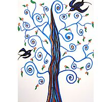 Swallows and the Orange Tree Photographic Print