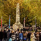 Remembrance Service 2013 by Theresa Selley