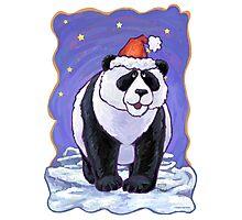 Panda Bear Christmas Photographic Print