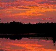Firey Sunset by Silverroses282