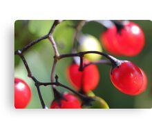 Berries 2 Canvas Print