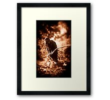 Pearched Framed Print