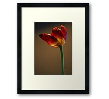 Welcome Spring II Framed Print
