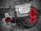 Armistice Day - We Remember Them by Colin J Williams Photography