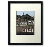 Bask in the Garden Framed Print