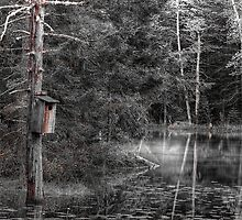 Wooded Refuge by Richard Bean