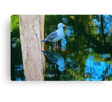 Total Reflection Canvas Print