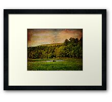 Summer Bachelors Fishing Framed Print