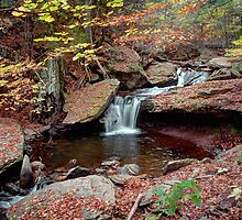 Fall Leaves Surround The Unsung Waterfall (AKA Aaron's Cascade) by Gene Walls