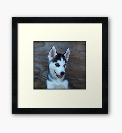 Little Sweetie Framed Print