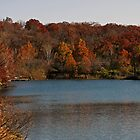 Autumn Waterscape by Ashley Dailey