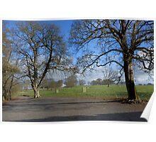 Tree view Glasserton Church carpark Poster
