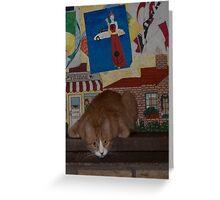 Spankypants lurking Greeting Card