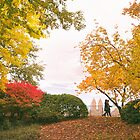 Autumn in Central Park - New York City by Vivienne Gucwa