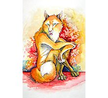 Foxpaint Photographic Print