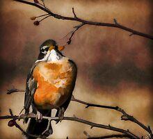 Waiting For Spring by Jordan Blackstone