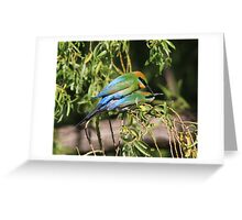 Coupulating  Rainbow Bee Eaters  Greeting Card
