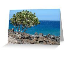 Lapakahi State Historical Park, The Big Island, Hawaii Greeting Card