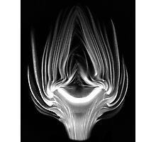 Artichoke Photographic Print