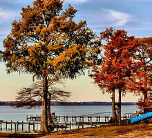 Trees On The River Bank by WeeZie