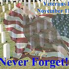 Veterans Day ~ November 11, 2013 ~ Never Forget by barnsis