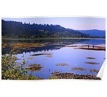 River Landscape Poster