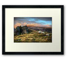 Kingdom of the Sheep Framed Print