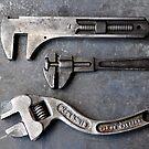 Tools by Julie Sherlock