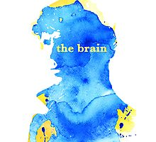 sherlock holmes - the brain Photographic Print