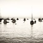 Catalina Island boats by Light Right Photos