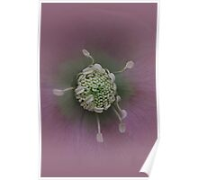 Misty Manipulated Hellebore Poster