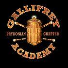 Gallifrey Academy by BlueShift