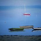 Rosebud Boats By Denise Murphy by TwoBaysArtGroup