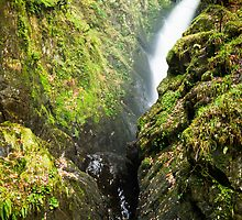 Aira Force - top to bottom by Ralph Goldsmith